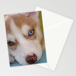 Siberian husky puppy Stationery Cards