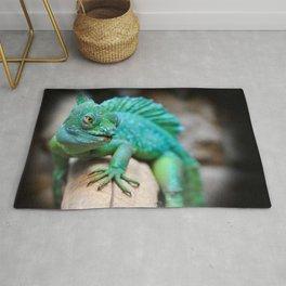 Gecko Reptile Photography Rug