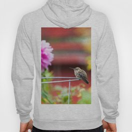 Meal Planning For Hummingbirds Hoody