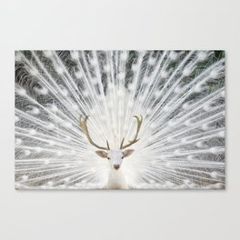Peacock Deer Canvas Print