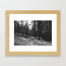BLACK AND WHITE LAND Framed Art Print