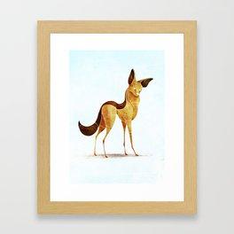 jackal Framed Art Print