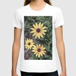 Three Gloriosa daisies T-shirt