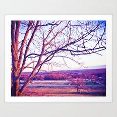 Du Nord Art Print