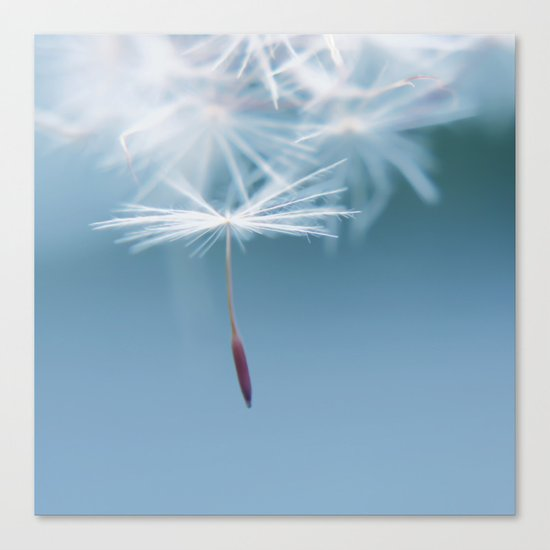 Holding on Canvas Print