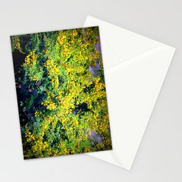 mimosas Stationery Cards