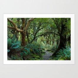 Primeval forest on Kepler Track Art Print