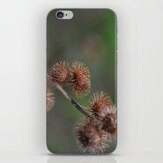 Piri Piri Burr iPhone Skin