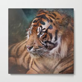 The mysterious eye of the tiger Metal Print