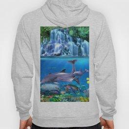 The Dolphin Family Hoody