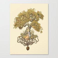 Orchard N0. 01 : Something Wonderful Canvas Print
