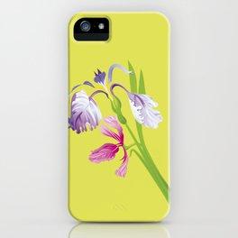 Beautiful Spring Irises iPhone Case