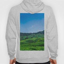 Tea Fields Landscape Hoody