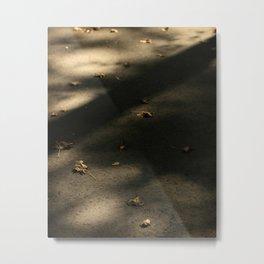 Dry Leaves In Fall Metal Print