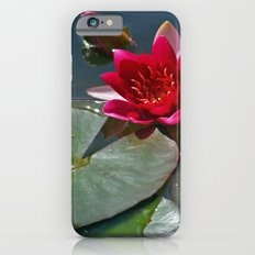 Red Waterlily Slim Case iPhone 6s