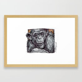 Bonobo Framed Art Print