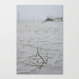 Early Fog On New Smyrna Beach Canvas Print