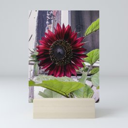 Rustic Red Sunflower Mini Art Print