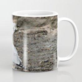 Seagull on the Shore of Lake Michigan Coffee Mug