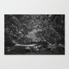 Lynn Headwaters in Infrared (B&W) Canvas Print