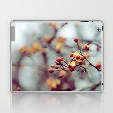 Frozen Fruit Laptop & iPad Skin