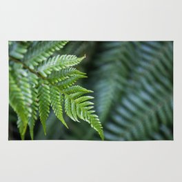 Fern Hollow Rug