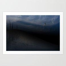 seagull Art Print