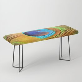 Peacock Feather, Photography Art Print Bench