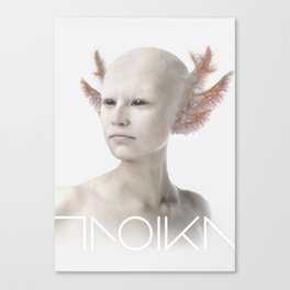 Troika zero-one Canvas Print