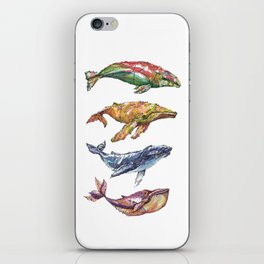 The Whales iPhone Skin