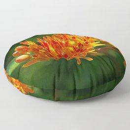 Butterflyweed, Asclepias tuberosa Floor Pillow