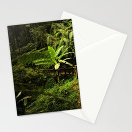 Tropical Forest Path Stationery Cards