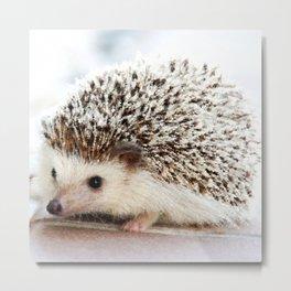 Geometric Hedgehog Metal Print