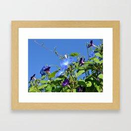 We Rival the Sky in Blueness Framed Art Print