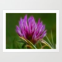 clover Art Prints featuring Clover by Best Light Images