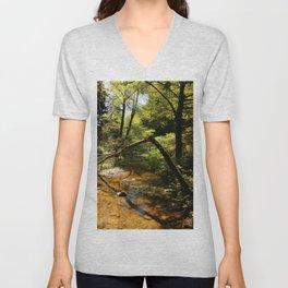 Muir Woods Impression Unisex V-Neck