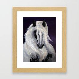 Irish Cob Horse Framed Art Print