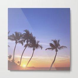 Florida Summer Sunrise Metal Print
