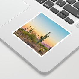 Desert / Scottsdale, Arizona Sticker