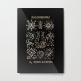 """""""Narcomedusia"""" from """"Art Forms of Nature"""" by Ernst Haeckel Metal Print"""