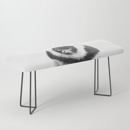 Black and white lemur animal portrait Bench