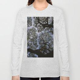 Oak Tree Reaching For The Sky Long Sleeve T-shirt