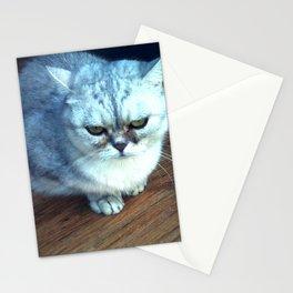 Belgian Blue Cat  Stationery Cards