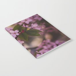 Beauty of Spring IV Notebook