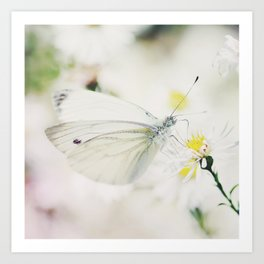 To wonderland and back butterfly Art Print