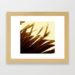 Palm Frond Framed Art Print
