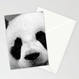 Panda 2 Stationery Cards