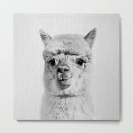 Alpaca - Black & White Metal Print