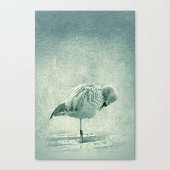 Flamingo Blues Canvas Print