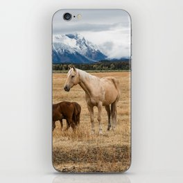 Mountain Horse - Western Style in the Grand Tetons iPhone Skin